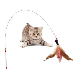 Kitten Pet Teaser Feather Wire Toy