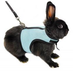 Hamster Rabbit Harness & Leash Set