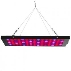 Egrow GL-2 40W LED grow light lamp with red blue UV & IR spectrum